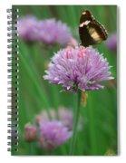 Butterfly On Clover Spiral Notebook