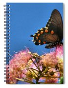 Butterfly On Mimosa Blossom Spiral Notebook