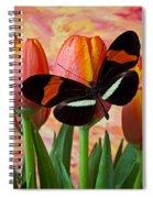 Butterfly On Orange Tulip Spiral Notebook
