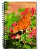 Butterfly On Pentas Spiral Notebook