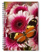 Butterfly On Pink Mum Spiral Notebook