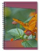 Butterfly Orange 16 By 20 Spiral Notebook