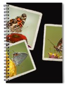 Butterfly Picture Page Collage Spiral Notebook