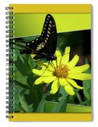 Butterfly Swallowtail 01 16 By 20 Spiral Notebook
