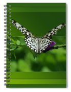 Butterfly White 16 By 20 Spiral Notebook