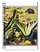 Butterlies At The Beach Spiral Notebook