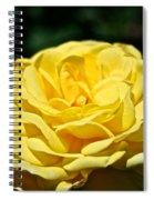 Buttery Rose Spiral Notebook