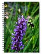 Buzzing Hyssop Spiral Notebook