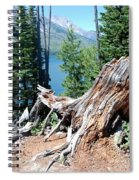 By Jenny Lake Spiral Notebook