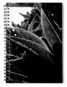 By The Estuary Shore  Spiral Notebook