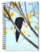 Bye Bye Blackbird  Spiral Notebook