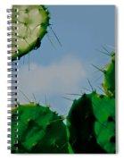 Cacti Junkie Spiral Notebook