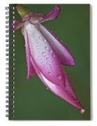 Cactus Flower Drops Spiral Notebook