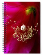 Cactus Flower Interior Spiral Notebook