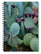 Cactus Plants Spiral Notebook
