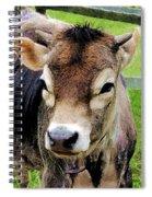 Calf Closeup Spiral Notebook