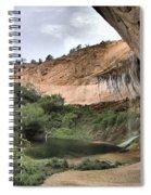 Calf Creek Demon Spiral Notebook
