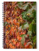 Calico By Nature Spiral Notebook
