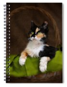 Calico Cat In Basket Spiral Notebook