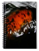 Calico Koi Wake Spiral Notebook