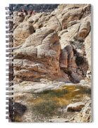 Calico Tanks Spiral Notebook