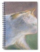 Calico Walking Spiral Notebook