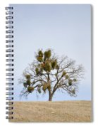 California Christmas Tree Spiral Notebook