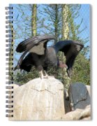 California Condor Spiral Notebook