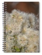 California Snow 2 Spiral Notebook