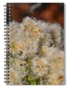 California Snow Spiral Notebook
