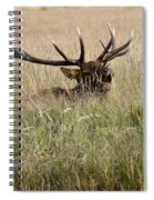 Call Of The Wild 1 Spiral Notebook