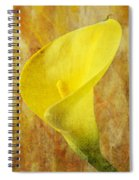 Calla Lily Beauty  Spiral Notebook