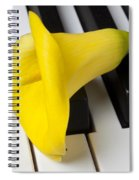 Calla Lily On Keyboard Spiral Notebook