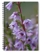 Calluna Vulgaris 4  Spiral Notebook