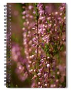 Calluna Vulgaris Spiral Notebook