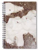 Camarasaurus Vertebrae Covered Spiral Notebook