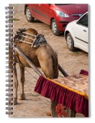 Camel Ready To Take Tourists For A Desert Safari Spiral Notebook