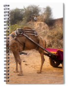 Camel Yoked To A Decorated Cart Meant For Carrying Passengers In India Spiral Notebook