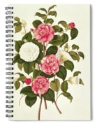 Camellia Spiral Notebook