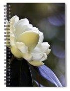 Camellia Seven Spiral Notebook