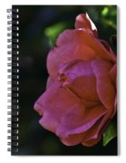 Camellia Twenty-five  Spiral Notebook