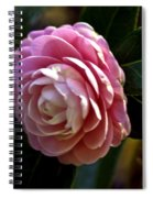 Camellia Twenty-three Spiral Notebook