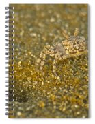 Camouflaged Spiral Notebook