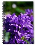 Campanula Glomerata Spiral Notebook