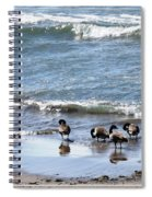 Canada Geese In Lake Erie Spiral Notebook