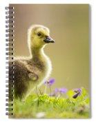 Canada Goose Baby Spiral Notebook