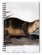 Canada Otter, 1846 Spiral Notebook