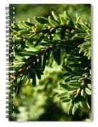 Canadian Hemlock Tips Spiral Notebook