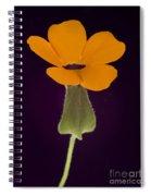 Canary Eye Spiral Notebook