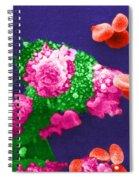Cancer Cell Death, Sem 3 Of 6 Spiral Notebook